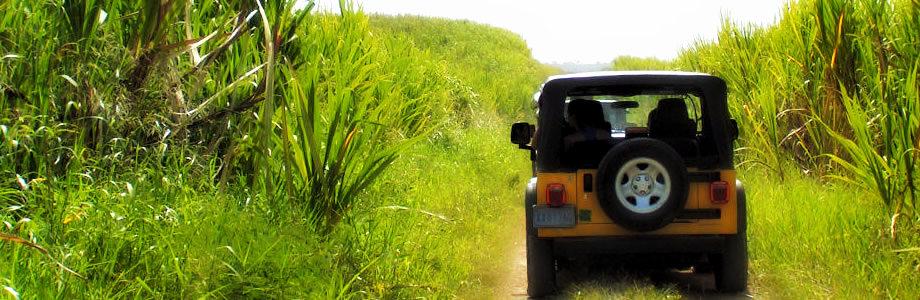 Safari Punta Cana Dominican Republic